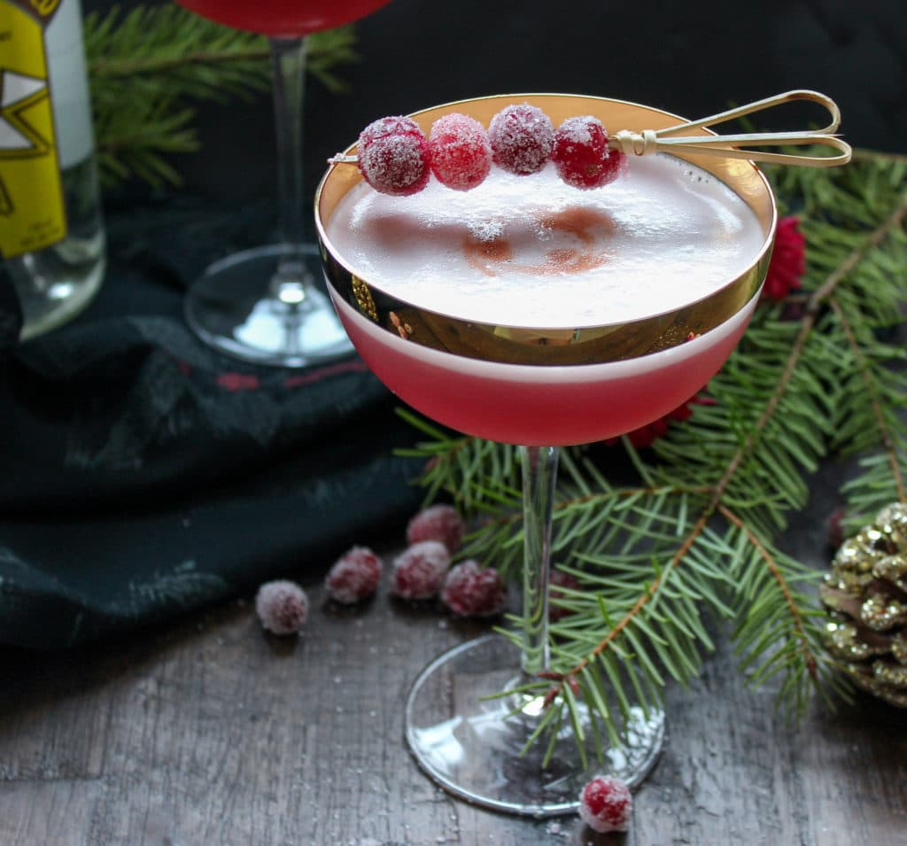 The Cranberry Pisco Sour