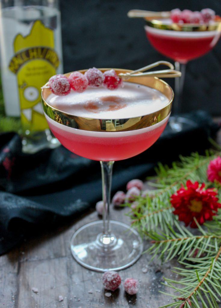 The Cranberry Pisco Sour